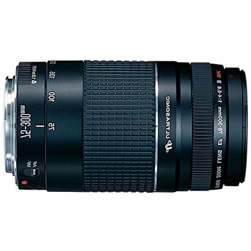Canon EF 75-300mm III Zoom for Cameras